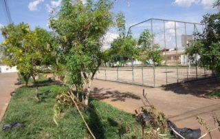 Junior Brunelli Sugere ao Diretor do Departamento de Parques e Jardins, a poda das árvores das praças do setor QSF, na cidade de Taguatinga, RA III. Junior Brunelli