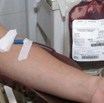 doadores de sangue e leite materno